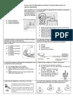 Prueba de Diagnostico -Ciencias Naturales -5 Basico- Listas