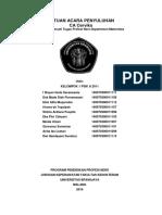 SAP CA CERVIKS.docx