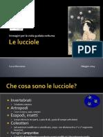 1_le_lucciole.pdf