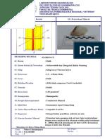 Lembar Deskripsi Mineral KARBONAT.docx