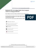 sharebrook on extraction.pdf