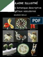 Vocabulaire-Illustre.pdf