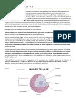 Glosario de BOTANICA.docx