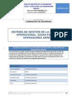 Guía SMSM AESA.pdf
