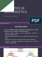 Principios de Bioenergética.pdf