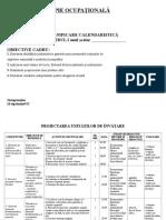 planificare terapie ocupațională