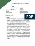PLAN DE TRABAJO ASESORIA DE CIENCIAS SOCIALES IP.docx
