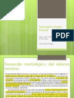neuropsicologainfantil