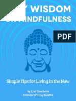 LoriDeschene_On Mindfulness.pdf