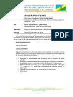 INFORME-ATM-02-pagos-sinche (1).docx
