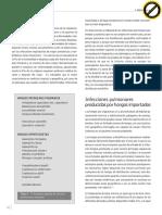 vol2-n2-6.pdf