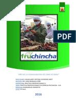 PP2-frutchincha.docx