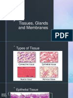 Tissues-Glands-and-Membranes.pdf
