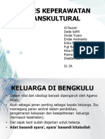Transkultural Dan Sunrise Model s1-3a Ppt