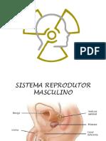 Radiologia.pptx