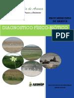 V2-Diagnostico Fisico Biotico.pdf