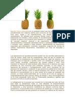 detalles agrialimentaria.docx