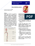 OBSTRUCCION ARTERIAL PERIFERICA AGUDA.docx