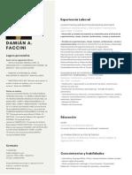 CV Damián Faccini_1553645630