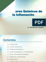 Clasemediadoresquimicosdelainflamacion