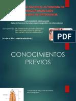 OCTAVO SEMINARIO DE FISIOLOGIA.pdf