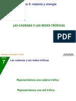 04 Cadenas Redes