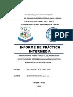 INFORME DE PRACTICAS INTERMEDIAS PEKOS.docx