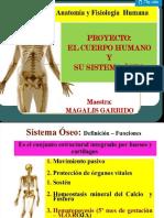 presentacion de los huesos y sus enfermedades..pptx