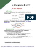 Molecul2 Reparation Replication
