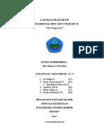 FDC II Tinggi Serat Fix