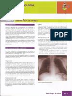 Manual Amir Radiologia7