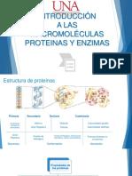 Tema 3 Proteinas