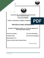 matriz mineria 300.pdf