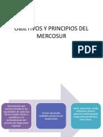 Objetivos y Principios Del Mercosur