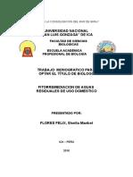 monografia de fitorremadiacion de aguas residuales