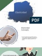 Elasticidad 1.0