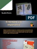 El Herbario.pptx