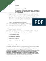 Gestão de Riscos de um Projeto.docx