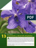 Libro Mundo Biologia Lw 13