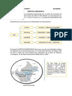 HIDDROVIA AMAZONICA.docx