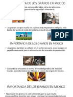Importancia de Los Granos en México
