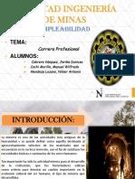 Carrera Profesional.pptx