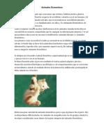 Definicion Animales Domesticos.docx