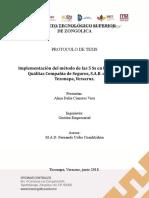 Alma Delia Protocolo 5S´s.docx