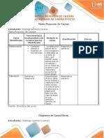 Matriz_Resumen_Y_Diagrama_Causa_Efecto_Solange Quintero.docx