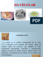 Tema 8 Teoria Celular