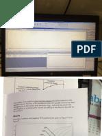 CT e Quantidade de ADN Curvas.pdf