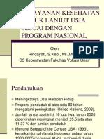 Yankes Lansi Ssi Program Nasional