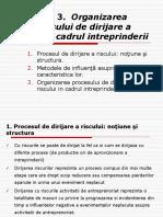 Tema 3. Oganizarea procesului de dirijare a riscului.pdf