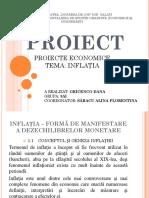 Proiecte Economice Gricenco Dana